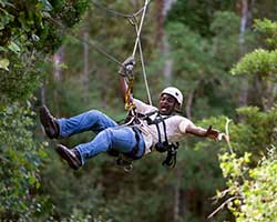 Zipline Adventure in Storms River Village, Tsitsikamma, South Africa